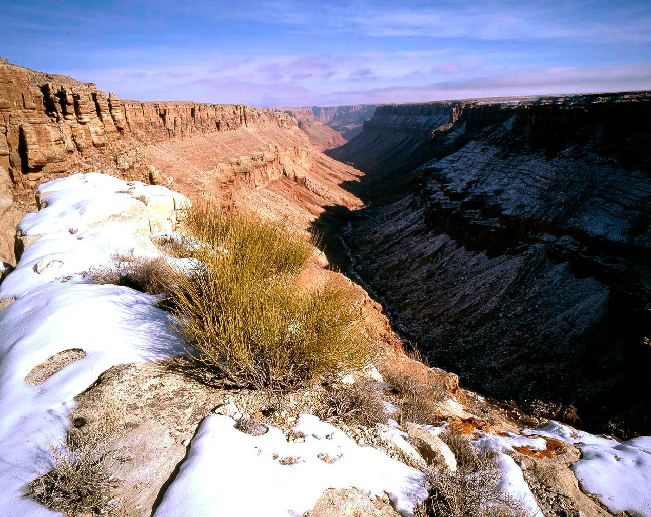 Photo Gallery Twenty Two Cathedral Wash Cliff Dwellers
